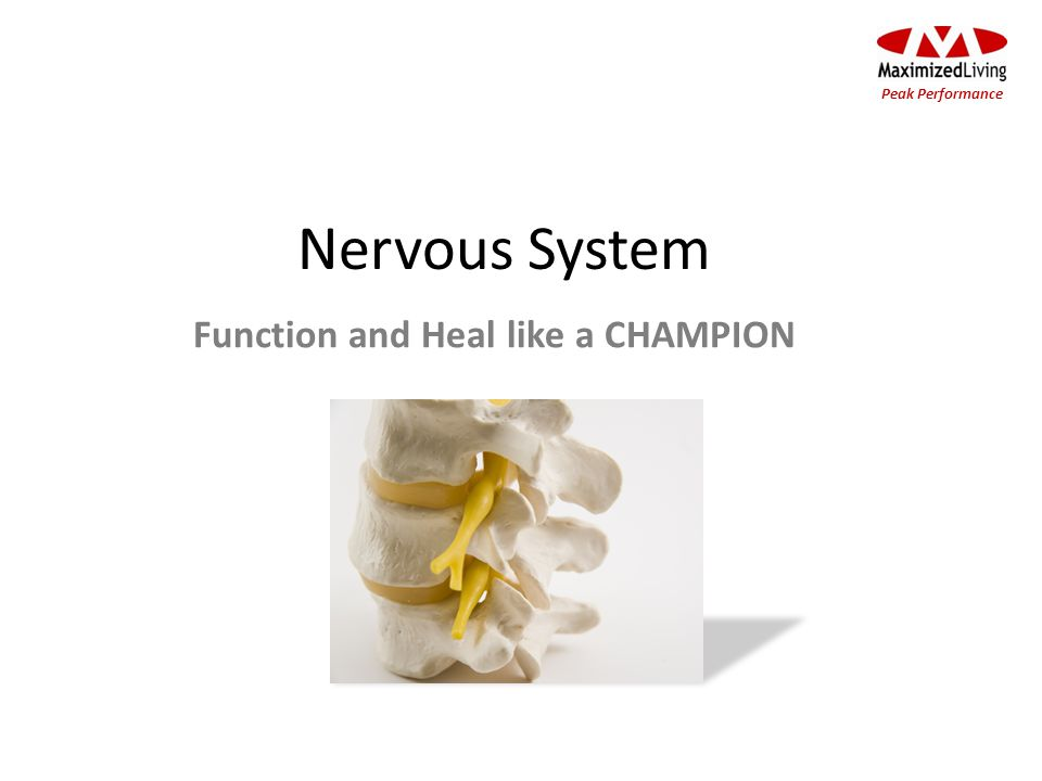 Nervous System Peak Performance Function and Heal like a CHAMPION