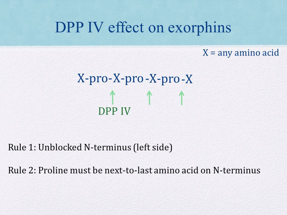 DPP IV X-pro- X-pro -X-pro -X DPP IV effect on exorphins X = any amino acid Rule 1: Unblocked N-terminus (left side) Rule 2: Proline must be next-to-last amino acid on N-terminus