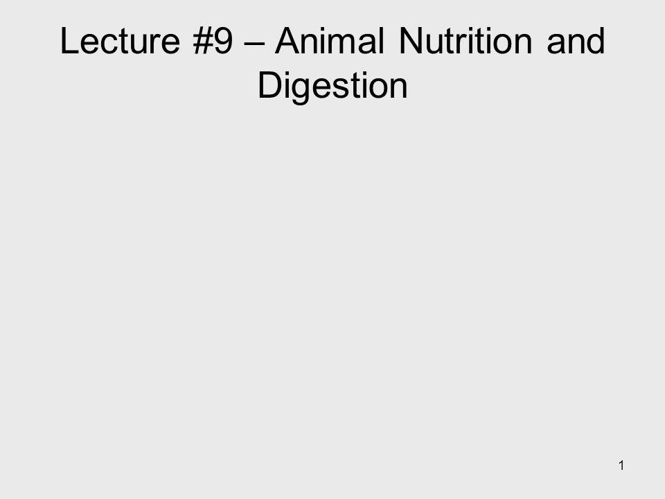 1 Lecture #9 – Animal Nutrition and Digestion