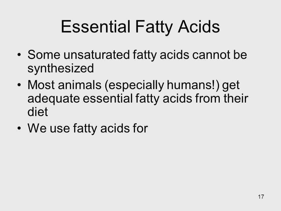 17 Essential Fatty Acids Some unsaturated fatty acids cannot be synthesized Most animals (especially humans!) get adequate essential fatty acids from