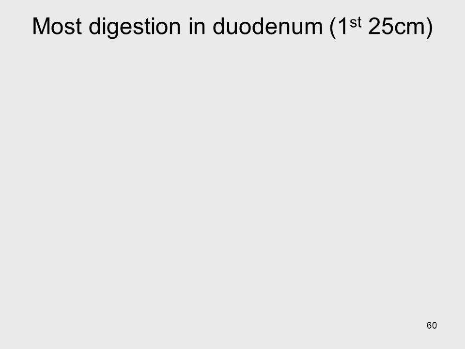 60 Most digestion in duodenum (1 st 25cm)