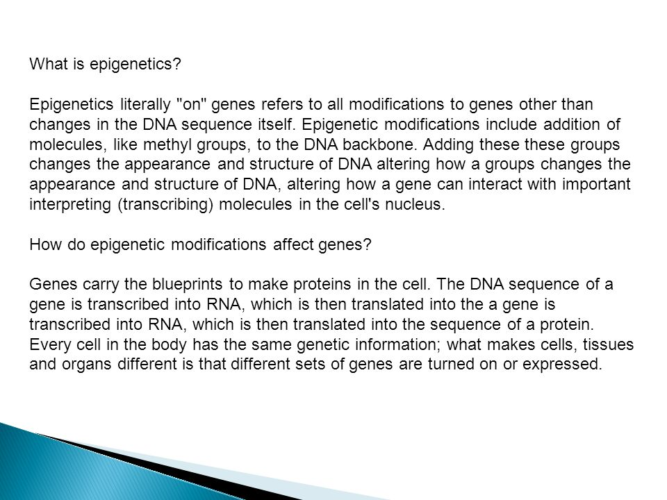 What is epigenetics.