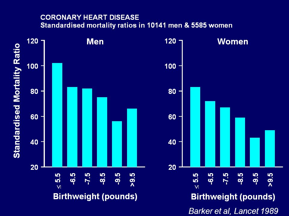 Growth of 357 boys who later developed coronary heart disease in a cohort of 4630 boys born in Helsinki 0123456789101112 Age (years) -0.25 -0.2 -0.15 -0.1 -0.05 0 0.05 Standard deviation (Z)-score Height Weight BMI Cohort Eriksson et al, 2001 Barker et al, 2005