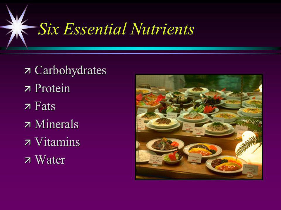 Six Essential Nutrients ä Carbohydrates ä Protein ä Fats ä Minerals ä Vitamins ä Water