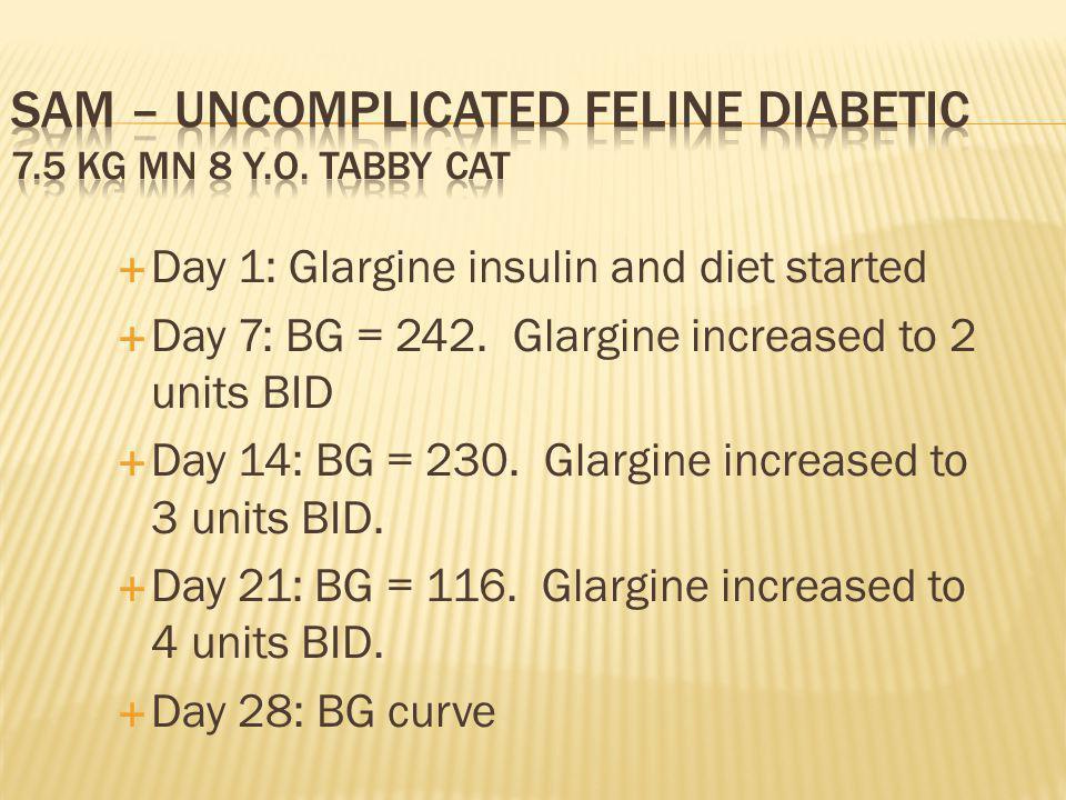 Day 1: Glargine insulin and diet started Day 7: BG = 242.