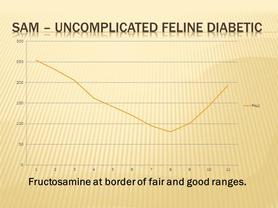 Fructosamine at border of fair and good ranges.