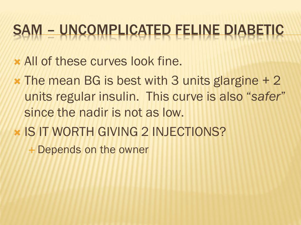 All of these curves look fine.The mean BG is best with 3 units glargine + 2 units regular insulin.