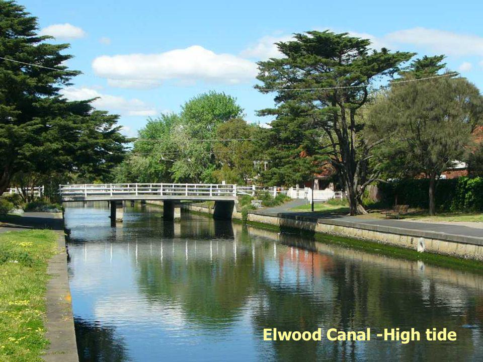 Elwood Canal -High tide