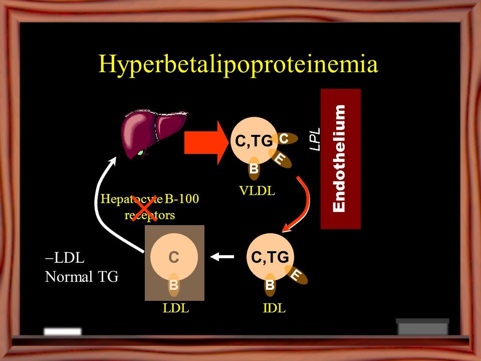 Hyperbetalipoproteinemia C,TG B VLDL Endothelium LPL C,TG B E IDLLDL E C C B Hepatocyte B-100 receptors LDL Normal TG