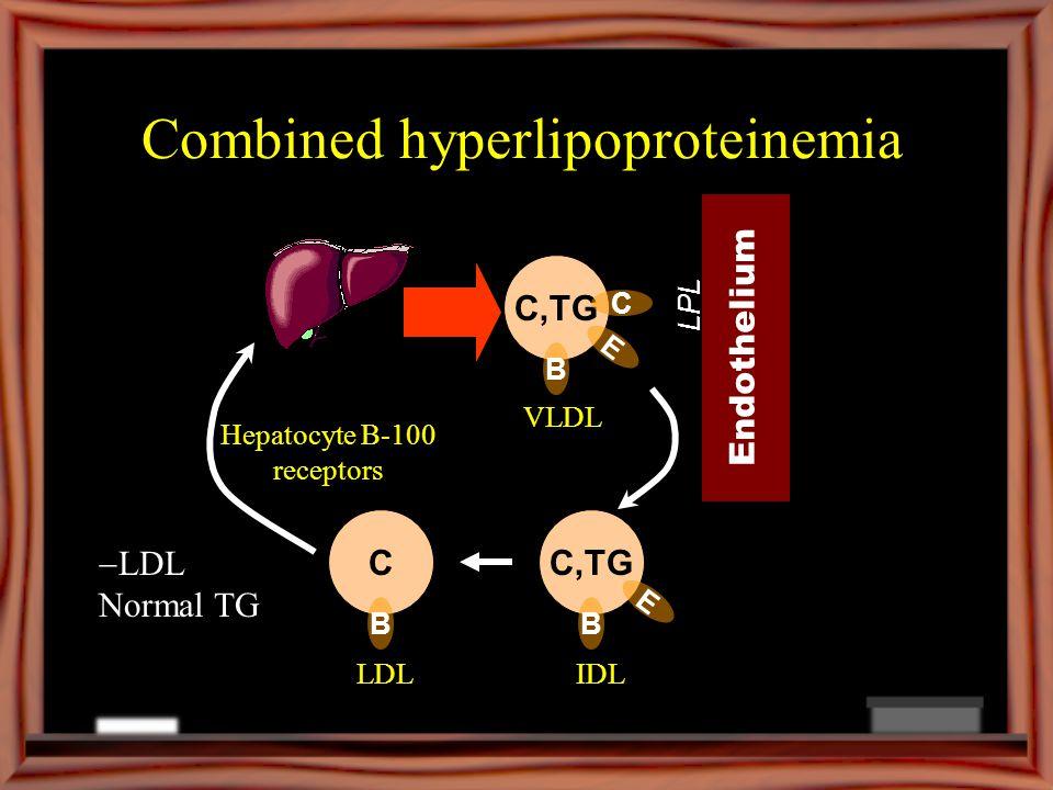 Combined hyperlipoproteinemia C,TG B VLDL Endothelium LPL C,TG B E IDLLDL E C C B Hepatocyte B-100 receptors LDL Normal TG