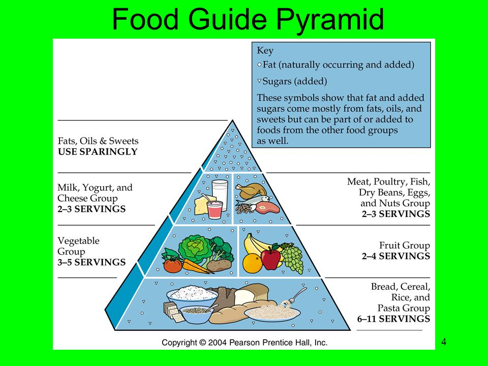 Chapter 184 Food Guide Pyramid