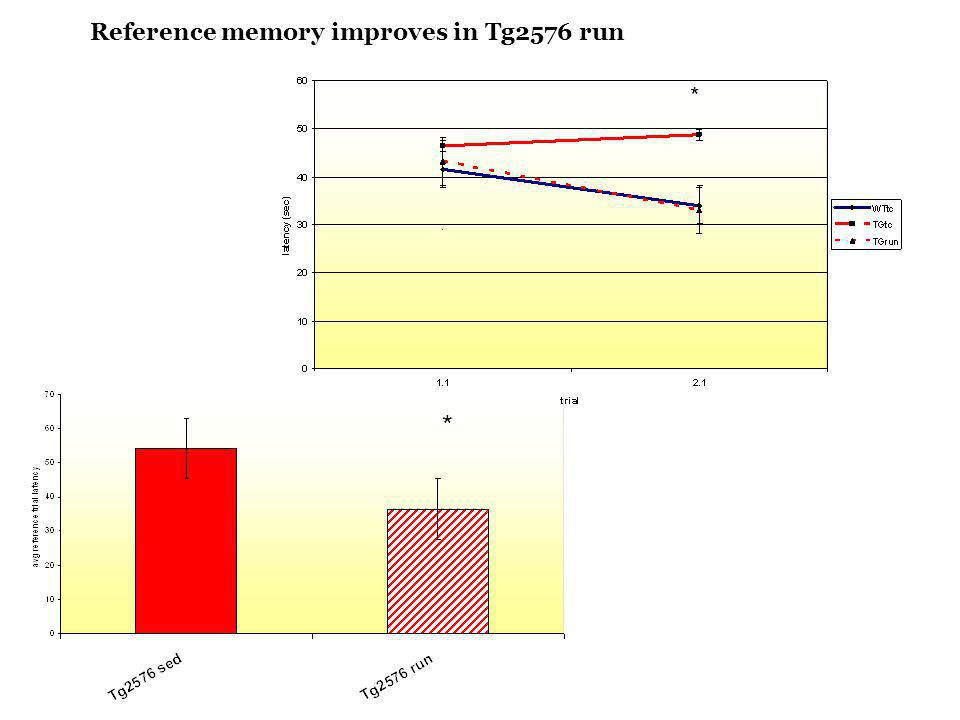 Reference memory improves in Tg2576 run * * *