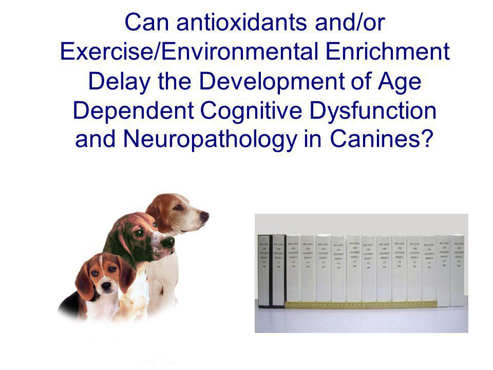 Can antioxidants and/or Exercise/Environmental Enrichment Delay the Development of Age Dependent Cognitive Dysfunction and Neuropathology in Canines