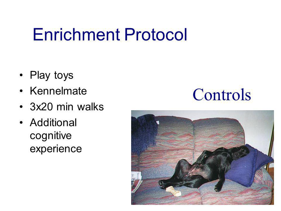Enrichment Protocol Play toys Kennelmate 3x20 min walks Additional cognitive experience Controls