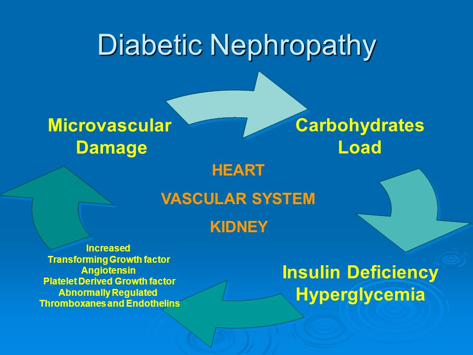 Diabetic Nephropathy …low protein diets may actually harm this population, primarily by aggravating malnutrition….
