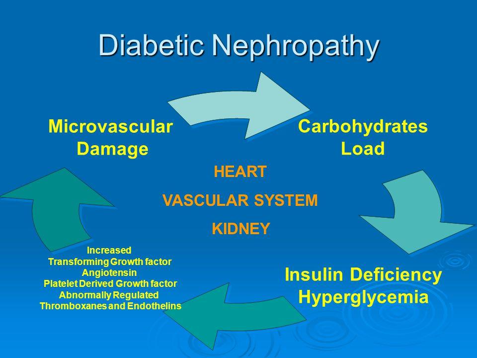 Objectives Definition of Diabetic Nephropathy Prevention and management of Diabetic Nephropathy Nutritional Management of Diabetics with advance Renal Disease