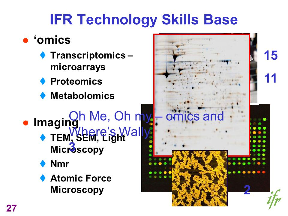 27 omics Transcriptomics – microarrays Proteomics Metabolomics Imaging TEM, SEM, Light Microscopy Nmr Atomic Force Microscopy IFR Technology Skills Base 15 11 Oh Me, Oh my – omics and Wheres Wally 3 2