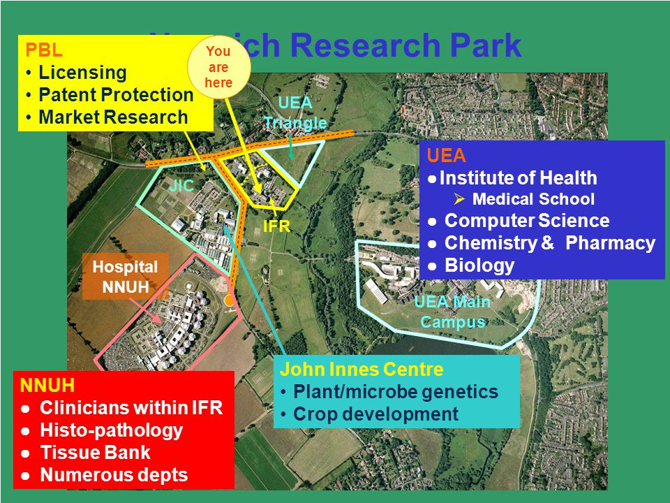 33 Norwich Research Park IFR UEA Triangle JIC Hospital NNUH UEA Main Campus PBL UEA Institute of Health Medical School Computer Science Chemistry & Pharmacy Biology PBL Licensing Patent Protection Market Research NNUH Clinicians within IFR Histo-pathology Tissue Bank Numerous depts You are here John Innes Centre Plant/microbe genetics Crop development