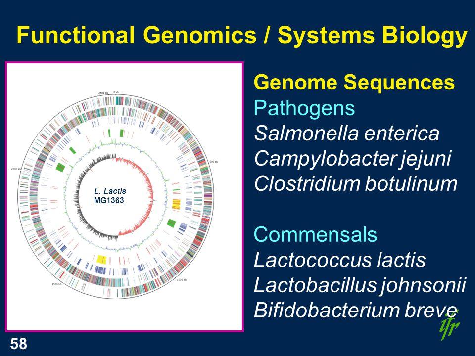 58 Functional Genomics / Systems Biology Genome Sequences Pathogens Salmonella enterica Campylobacter jejuni Clostridium botulinum Commensals Lactococcus lactis Lactobacillus johnsonii Bifidobacterium breve L.