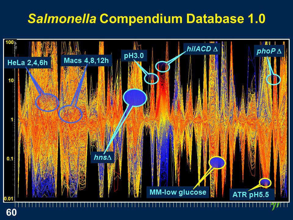 60 100 10 1 0.1 0.01 Salmonella Compendium Database 1.0 Macs 4,8,12h HeLa 2,4,6h hns pH3.0 hilACD MM-low glucose ATR pH5.5 phoP