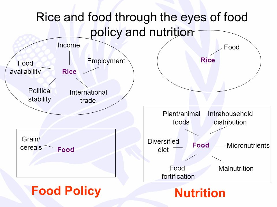 Rice and food through the eyes of food policy and nutrition Food Rice Food Policy Nutrition Employment Income Food availability Political stability International trade Grain/ cereals Rice Food fortification Micronutrients Malnutrition Diversified diet Plant/animal foods Intrahousehold distribution