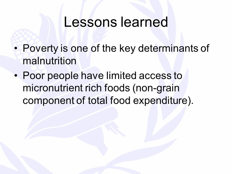 Lessons learned Poverty is one of the key determinants of malnutrition Poor people have limited access to micronutrient rich foods (non-grain component of total food expenditure).
