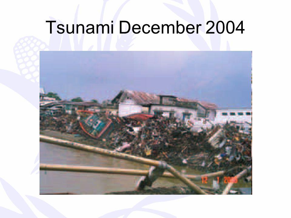 Tsunami December 2004
