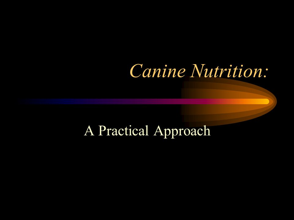 Canine Nutrition: A Practical Approach