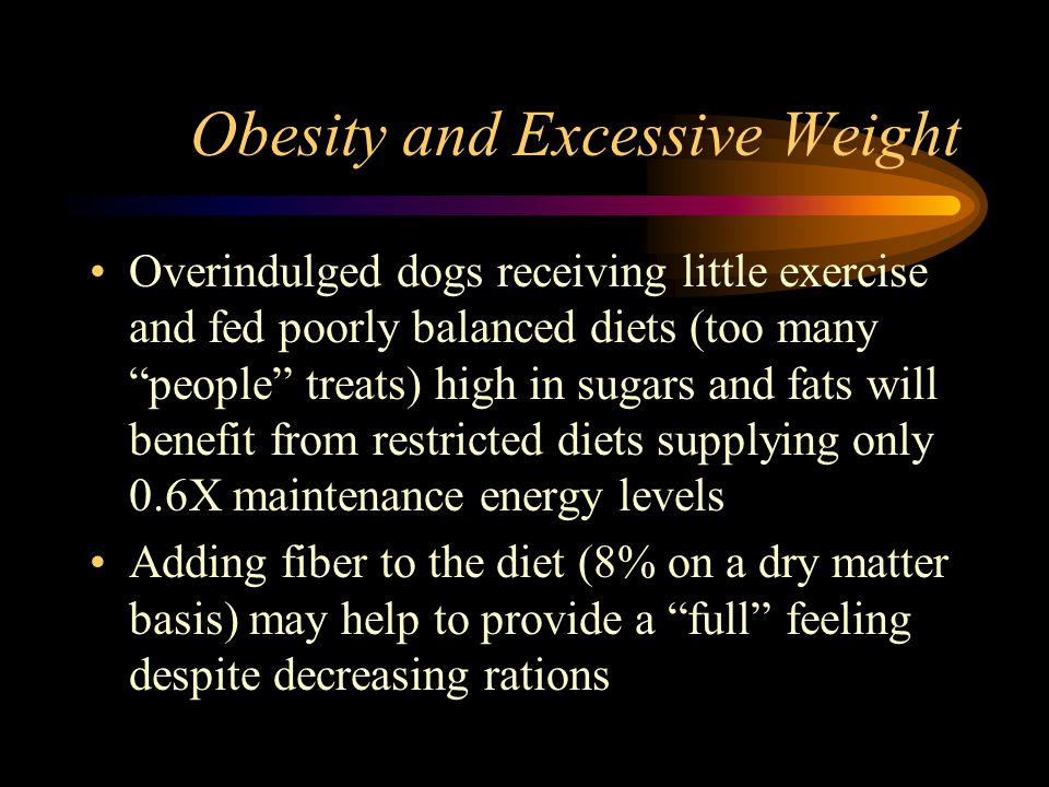 Obesity and Excessive Weight Overindulged dogs receiving little exercise and fed poorly balanced diets (too many people treats) high in sugars and fat