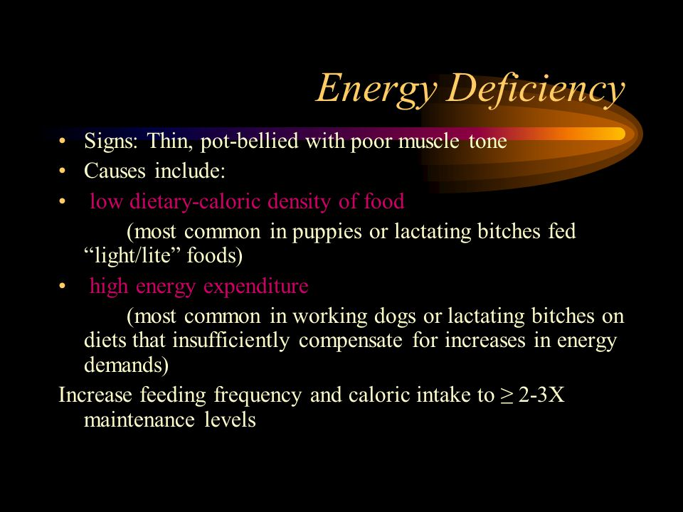 Energy Deficiency Signs: Thin, pot-bellied with poor muscle tone Causes include: low dietary-caloric density of food (most common in puppies or lactat