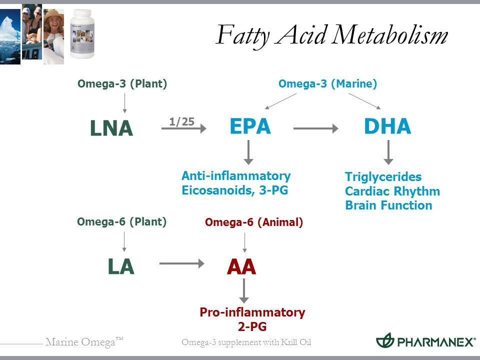 Marine Omega Omega-3 supplement with Krill Oil Fatty Acid Metabolism Pro-inflammatory 2-PG LNA Omega-3 (Plant) Anti-inflammatory Eicosanoids, 3-PG Tri