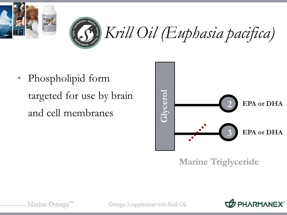 Marine Omega Omega-3 supplement with Krill Oil Krill Oil (Euphasia pacifica) Phospholipid form targeted for use by brain and cell membranes 2 3 Marine