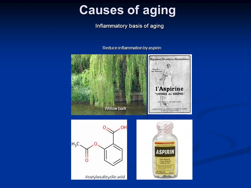 Causes of aging Inflammatory basis of aging Willow bark Acetylesalicyclic acid Reduce inflammation by aspirin Discovered ~6000 years ago Hippocrates d