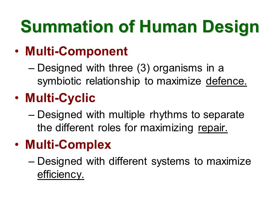Multi-Component Three separate groups of cells –Human Body –Small Intestinal Bacterial Colony –Large Intestinal Bacterial Colony Function as a Symbiotic Organism –Work synergistically –Compliment each other –Communicating at the cellular level –Primary role is to improve Human defense system