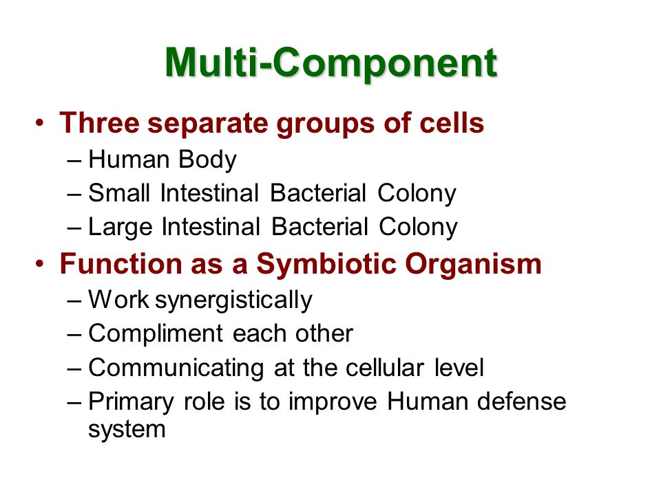 Human Body Dominant Organism –Provide food and shelter for other organisms Highly efficient multi-system organism –Consists of Trillions of cells –Cells specialized and organized in systems –Cells have pre-determined functions Compromised Immune System –Limited access to genetic material –Require flexibility of other organisms to maximize immune/defense response.