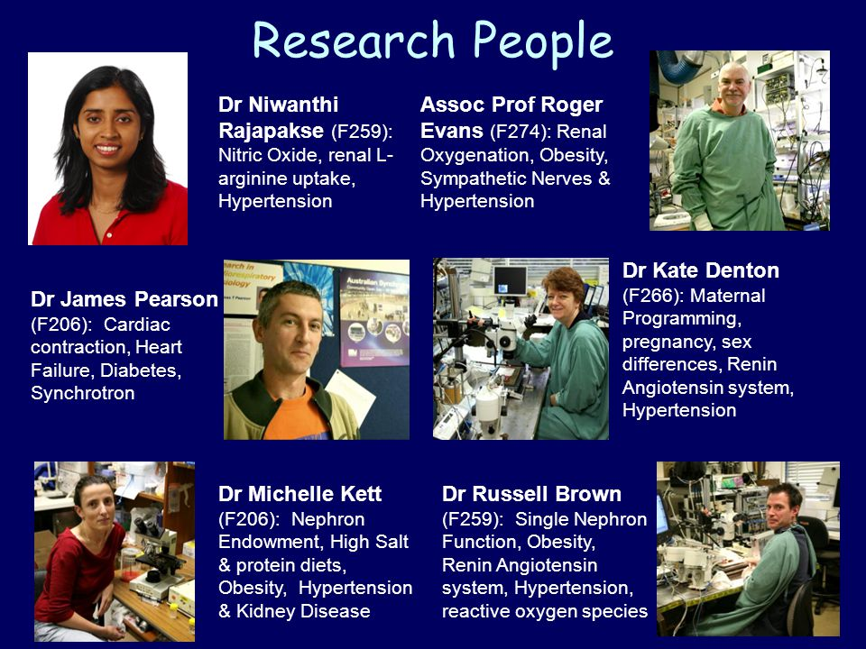 Research People Dr Niwanthi Rajapakse (F259): Nitric Oxide, renal L- arginine uptake, Hypertension Assoc Prof Roger Evans (F274): Renal Oxygenation, Obesity, Sympathetic Nerves & Hypertension Dr James Pearson (F206): Cardiac contraction, Heart Failure, Diabetes, Synchrotron Dr Kate Denton (F266): Maternal Programming, pregnancy, sex differences, Renin Angiotensin system, Hypertension Dr Michelle Kett (F206): Nephron Endowment, High Salt & protein diets, Obesity, Hypertension & Kidney Disease Dr Russell Brown (F259): Single Nephron Function, Obesity, Renin Angiotensin system, Hypertension, reactive oxygen species