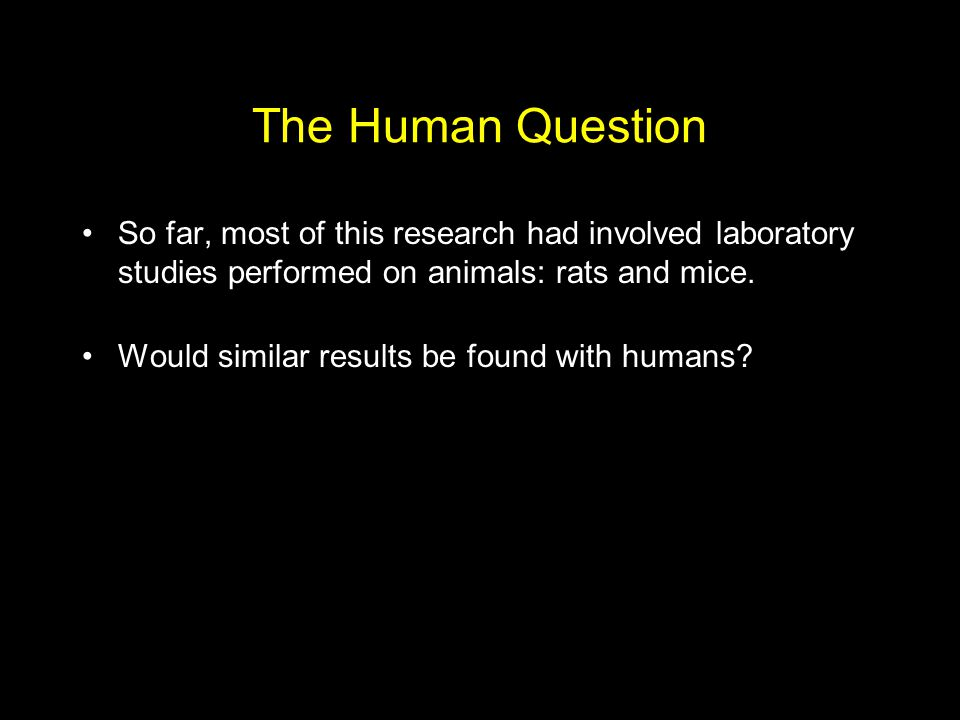 The Human Question So far, most of this research had involved laboratory studies performed on animals: rats and mice.