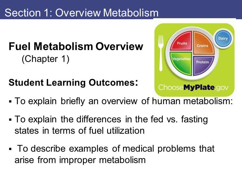 Fuel Metabolism Overview (Chapter 1) Student Learning Outcomes : To explain briefly an overview of human metabolism: To explain the differences in the