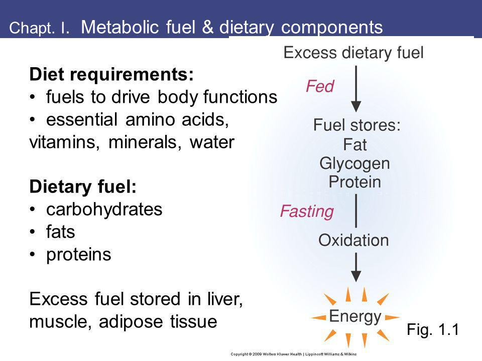 I. Dietary fuels provide energy as ATP Fig. 1.2