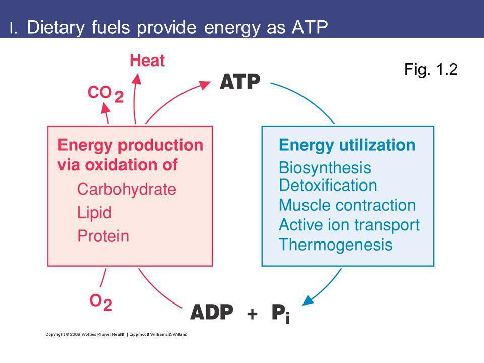 Oxidation of fuels is extraction of electrons Fig.