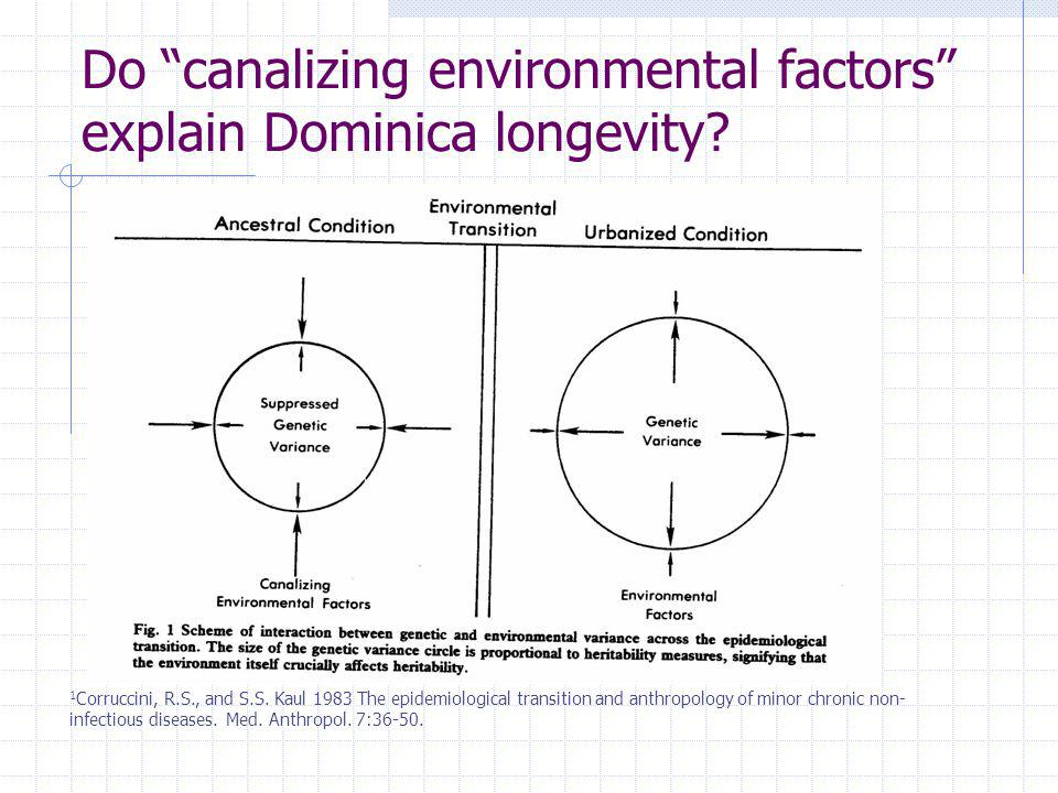 Do canalizing environmental factors explain Dominica longevity? 1 Corruccini, R.S., and S.S. Kaul 1983 The epidemiological transition and anthropology