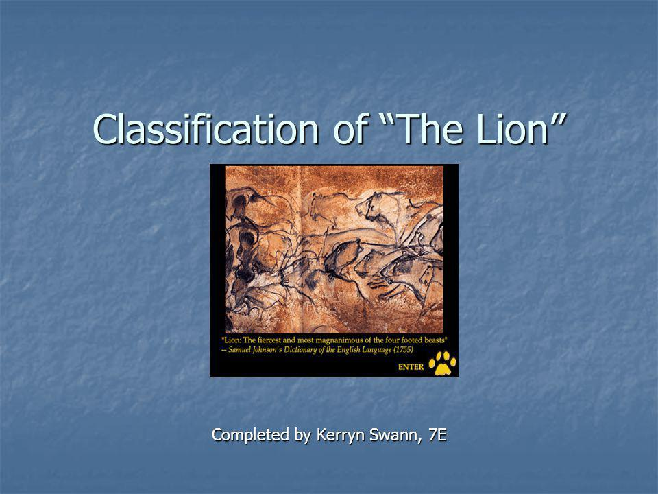 Classification of The Lion Completed by Kerryn Swann, 7E