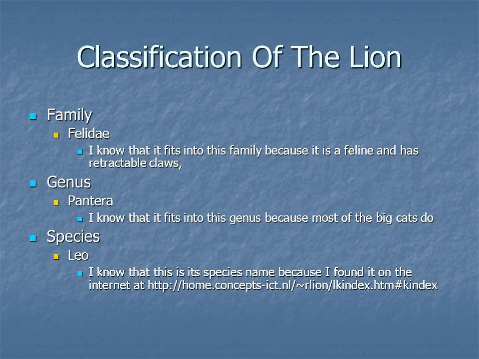 Classification Of The Lion Family Family Felidae Felidae I know that it fits into this family because it is a feline and has retractable claws, I know that it fits into this family because it is a feline and has retractable claws, Genus Genus Pantera Pantera I know that it fits into this genus because most of the big cats do I know that it fits into this genus because most of the big cats do Species Species Leo Leo I know that this is its species name because I found it on the internet at http://home.concepts-ict.nl/~rlion/lkindex.htm#kindex I know that this is its species name because I found it on the internet at http://home.concepts-ict.nl/~rlion/lkindex.htm#kindex