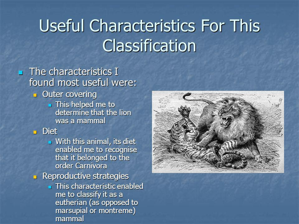 Useful Characteristics For This Classification The characteristics I found most useful were: The characteristics I found most useful were: Outer covering Outer covering This helped me to determine that the lion was a mammal This helped me to determine that the lion was a mammal Diet Diet With this animal, its diet enabled me to recognise that it belonged to the order Carnivora With this animal, its diet enabled me to recognise that it belonged to the order Carnivora Reproductive strategies Reproductive strategies This characteristic enabled me to classify it as a eutherian (as opposed to marsupial or montreme) mammal This characteristic enabled me to classify it as a eutherian (as opposed to marsupial or montreme) mammal