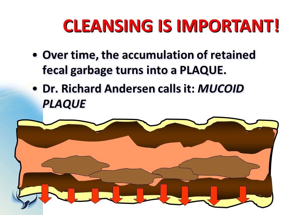 Over time, the accumulation of retained fecal garbage turns into a PLAQUE. Dr. Richard Andersen calls it: MUCOID PLAQUE Over time, the accumulation of