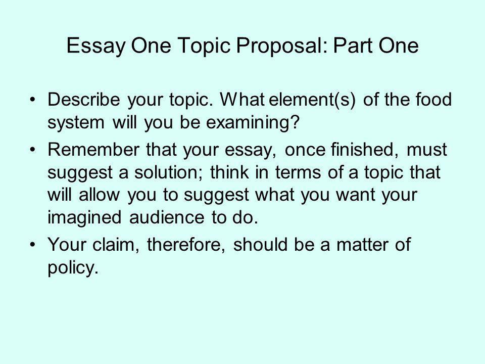 toulmin essay