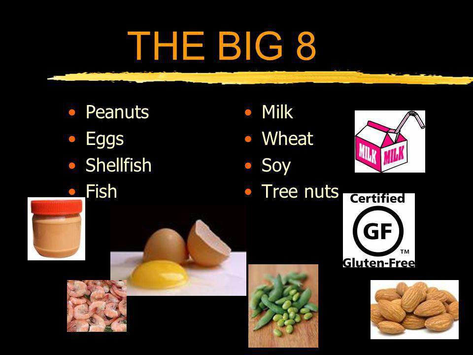 THE BIG 8 Account for 80% of allergies Most kids outgrow food allergies Most are NOT life-threatening