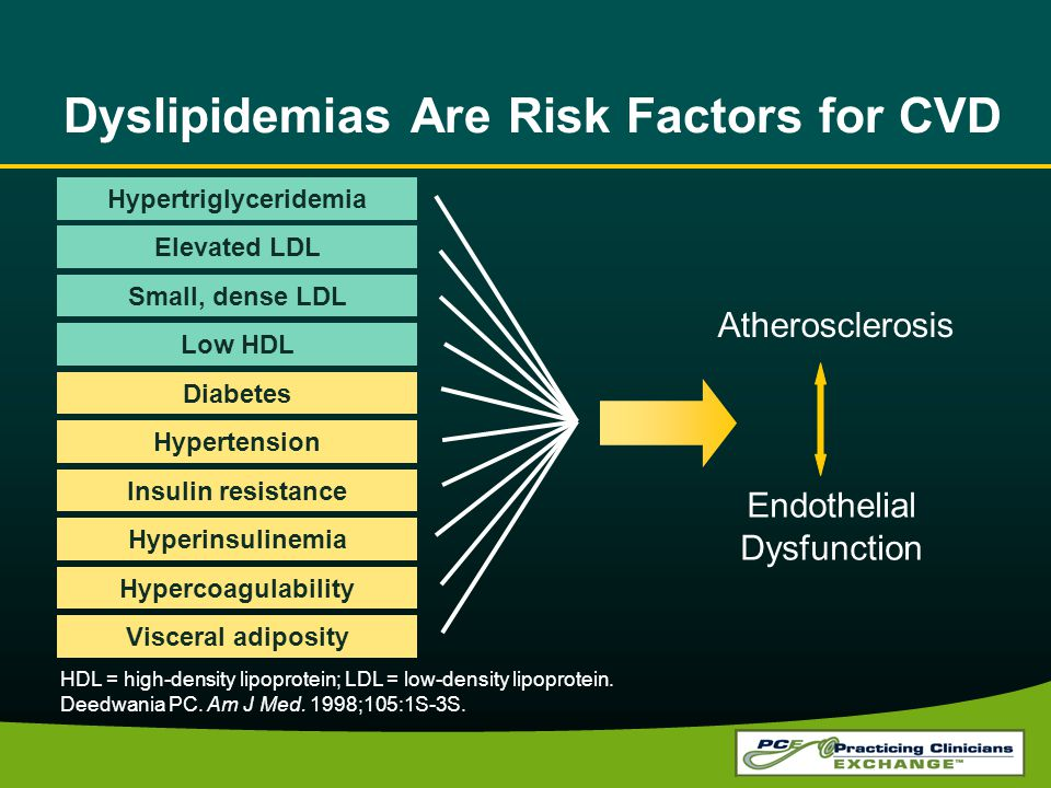 Dyslipidemias Are Risk Factors for CVD HDL = high-density lipoprotein; LDL = low-density lipoprotein.