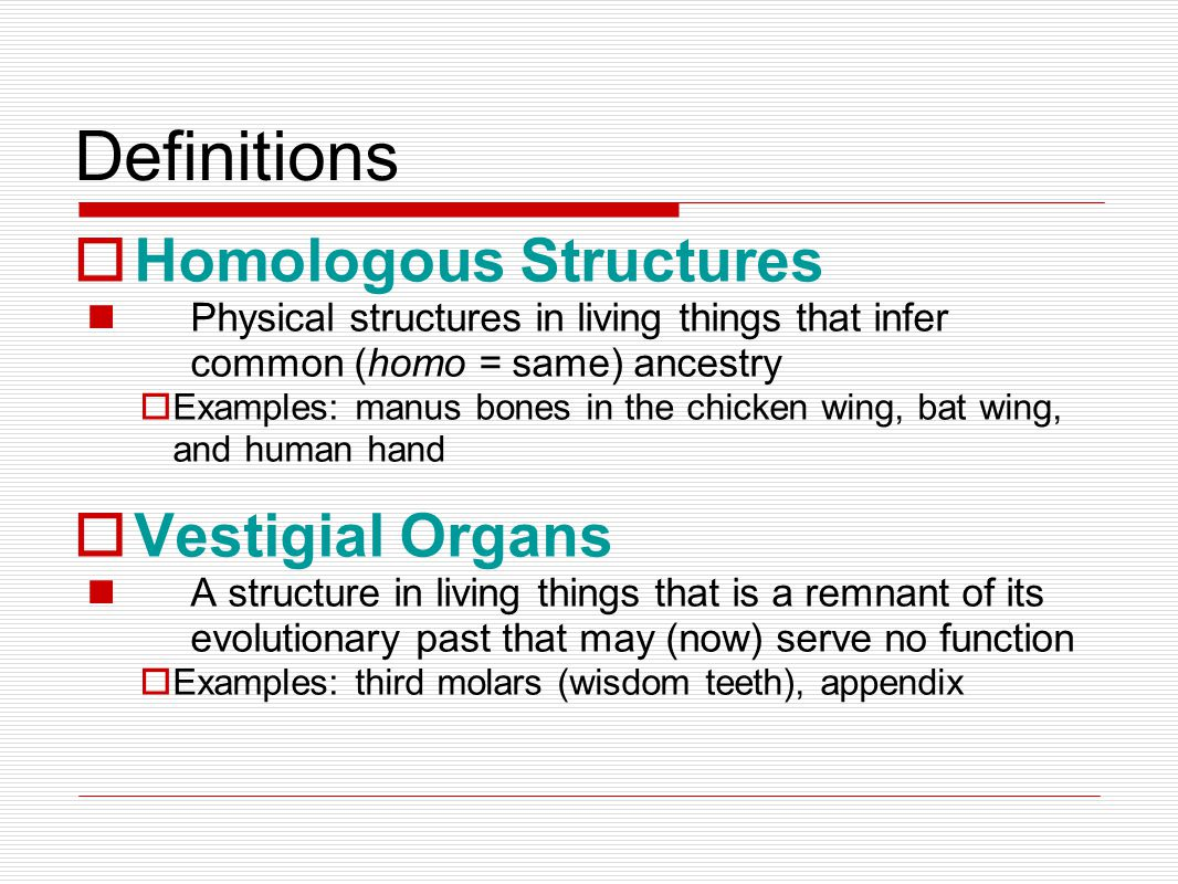 Definitions Homologous Structures Physical structures in living things that infer common (homo = same) ancestry Examples: manus bones in the chicken wing, bat wing, and human hand Vestigial Organs A structure in living things that is a remnant of its evolutionary past that may (now) serve no function Examples: third molars (wisdom teeth), appendix