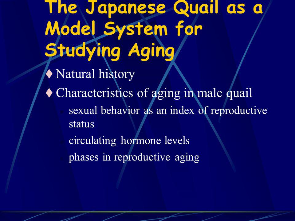 The Japanese Quail as a Model System for Studying Aging Natural history Characteristics of aging in male quail l sexual behavior as an index of reproductive status l circulating hormone levels l phases in reproductive aging